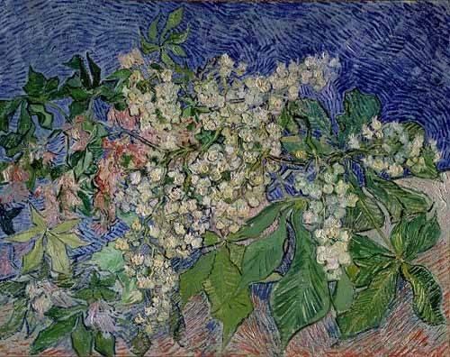 tableaux-de-paysages - Tableau -Branches de marronniers en fleurs- - Van Gogh, Vincent
