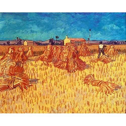 pinturas de paisagens - Quadro -Campo de cereales con gravillas-