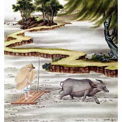 Tableau -Campesino labrando el arrozal-