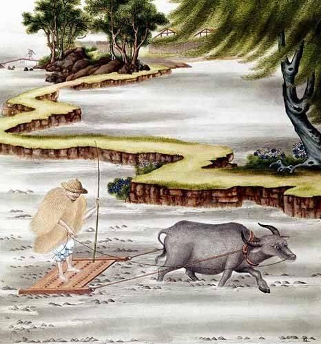 tableaux-orientales - Tableau -Campesino labrando el arrozal- - _Anónimo Chino
