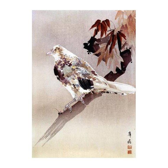 imagens étnicas e leste - Quadro -Pájaro de cuerpo rechoncho-