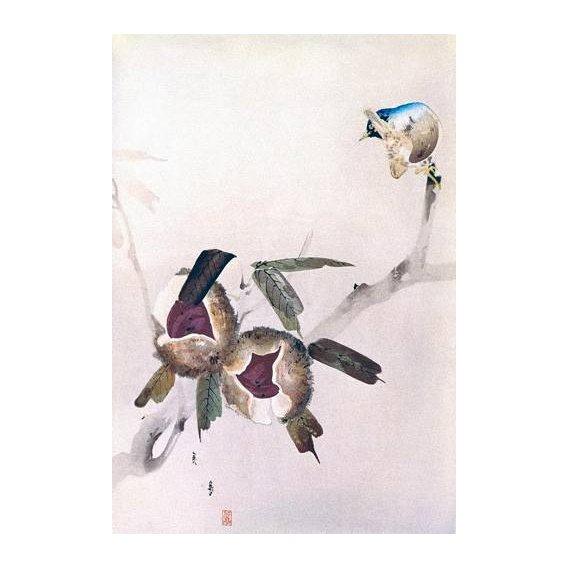 imagens étnicas e leste - Quadro -Pequeño pajaro sobre una rama de castaño-