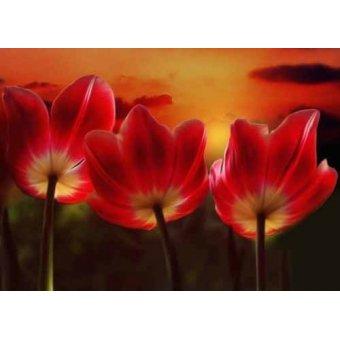 Tableaux de Fleurs - Tableau -Moderno CM1455- - Medeiros, Celito
