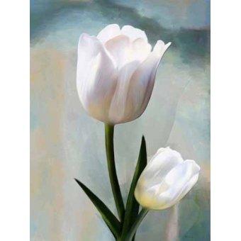 Tableaux de Fleurs - Tableau -Moderno CM2038- - Medeiros, Celito