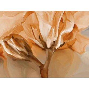 Tableaux de Fleurs - Tableau -Moderno CM3600- - Medeiros, Celito