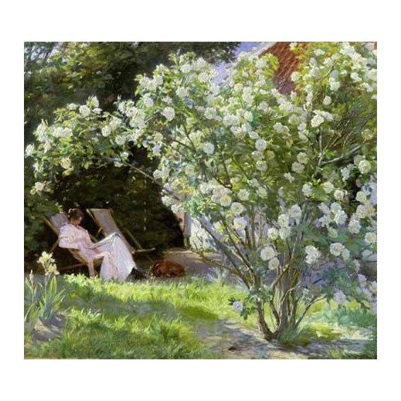 imagens de flores - Quadro -Line Roses (The artists wife at Skagen)-