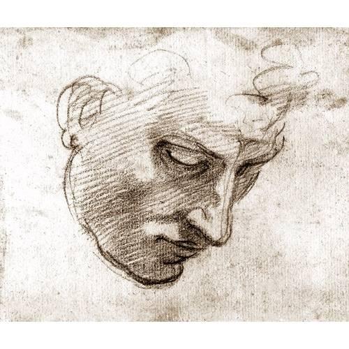 Tableau -Studio di volto maschile-