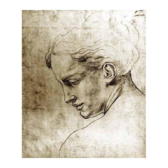 imagens de mapas, gravuras e aquarelas - Quadro -Volto di giovane visto di profilo-