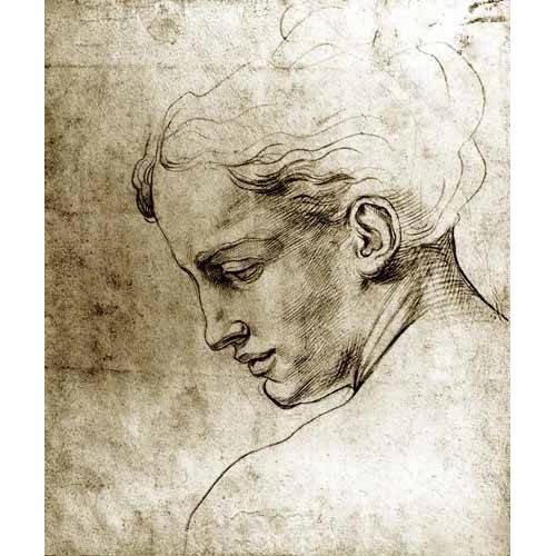 Tableau -Volto di giovane visto di profilo-