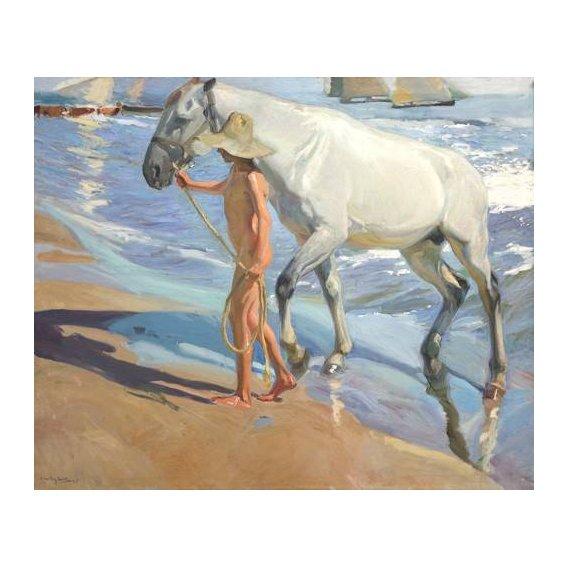 fotos de fauna - Quadro -El bano del caballo-