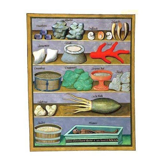 quadros decorativos - Quadro -Libro de las medicinas sencillas 1-