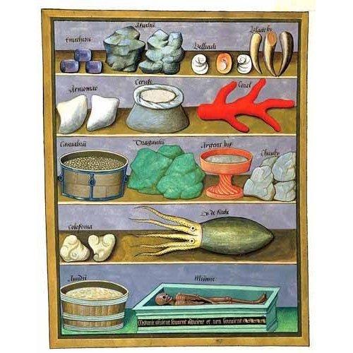 Tableau -Libro de las medicinas sencillas 1-
