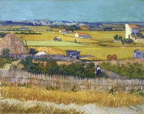 tableaux-de-paysages - Tableau -La récolte, 1888- - Van Gogh, Vincent