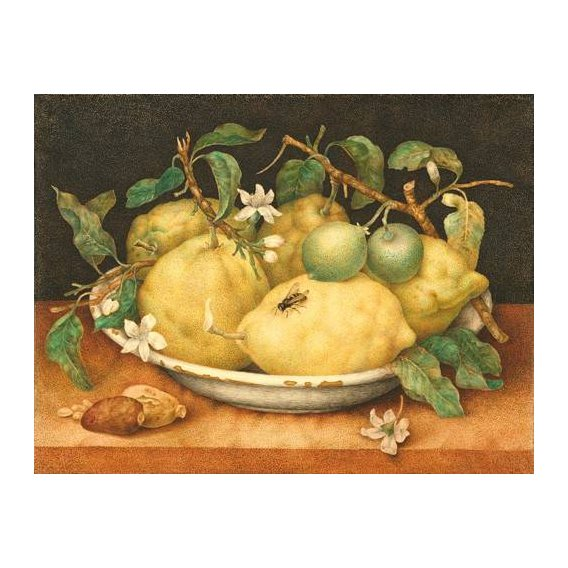 naturezas mortas - Quadro -Bodegón con cesto de limones-