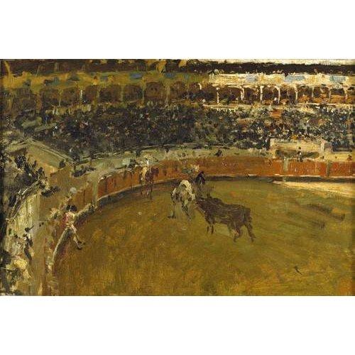 fotos de fauna - Quadro -La corrida de toros-