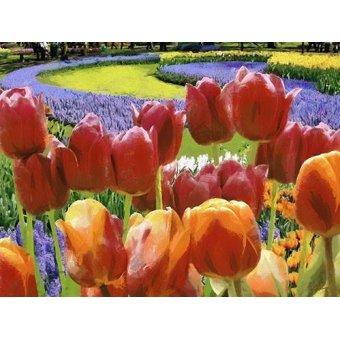 Tableaux de Fleurs - Tableau -Moderno CM7005- - Medeiros, Celito