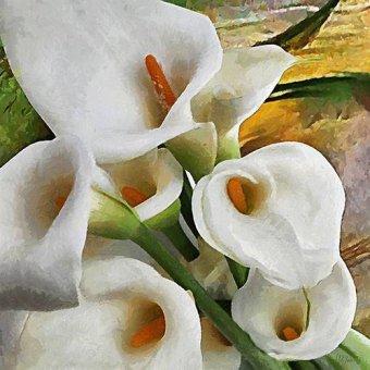 Tableaux de Fleurs - Tableau -Moderno CM9474- - Medeiros, Celito