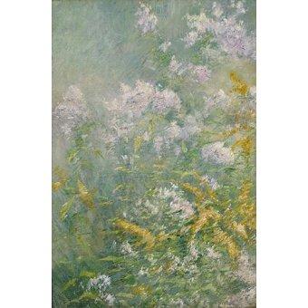 Tableaux de Fleurs - Tableau -Flores del prado- - Twachtman, John