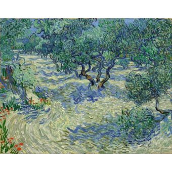 Tableau -Olive Orchard, 1889-