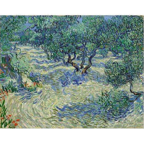 pinturas de paisagens - Quadro -Olive Orchard, 1889-