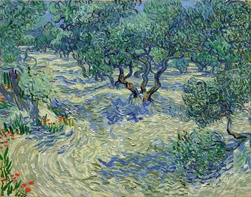 tableaux-de-paysages - Tableau -Olive Orchard, 1889- - Van Gogh, Vincent