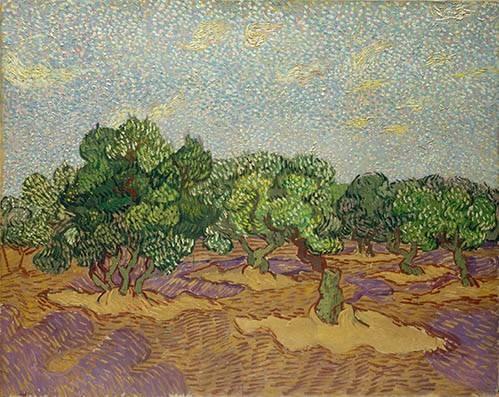 tableaux-de-paysages - Tableau -Oliviers- - Van Gogh, Vincent
