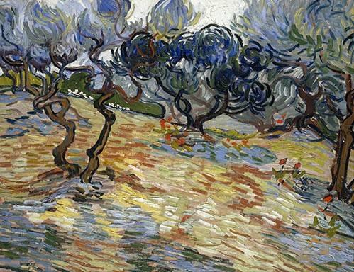 tableaux-de-paysages - Tableau -Les oliviers, 1889- - Van Gogh, Vincent