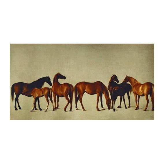 fotos de fauna - Quadro -Mares and Foals- (caballos)