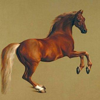 Tableaux de faune - Tableau -Whistlejacket- (caballos) - Stubbs, George