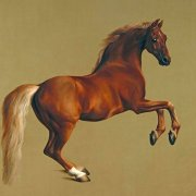 Tableau -Whistlejacket- (caballos)