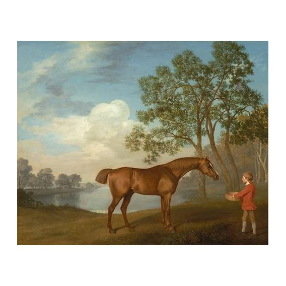 fotos de fauna - Quadro -Pumpkin with a Stable-lad- (caballos)