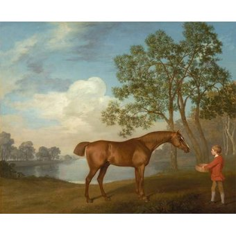 Tableaux de faune - Tableau -Pumpkin with a Stable-lad- (caballos) - Stubbs, George