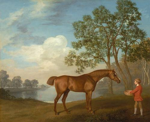 tableaux-de-faune - Tableau -Pumpkin with a Stable-lad- (caballos) - Stubbs, George