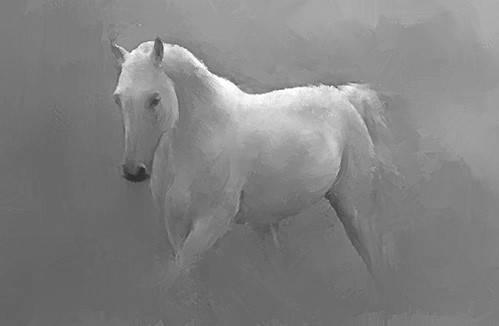 tableaux-de-faune - Tableau -Caballo blanco- - _Anónimo Español