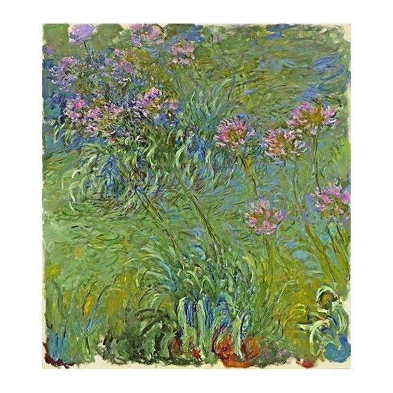 imagens de flores - Quadro -Flores de agapantus, 1914-