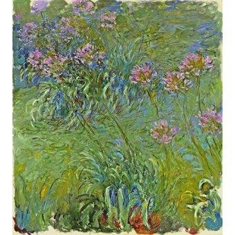 Tableaux de Fleurs - Tableau -Le Parterre aux agapanthes, 1914- - Monet, Claude