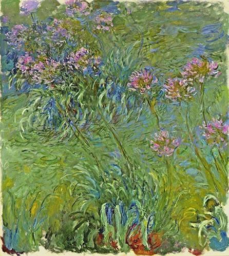 tableaux-de-fleurs - Tableau -Le Parterre aux agapanthes, 1914- - Monet, Claude