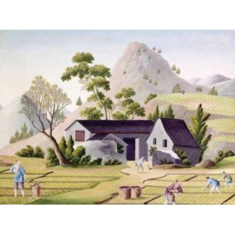Tableaux orientales - Tableau -Campesinos en los arrozales- - _Anónimo Chino