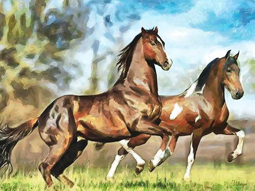 tableaux-modernes - Tableau -Moderno CM10537- (caballos) - Medeiros, Celito