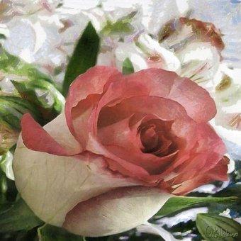 Tableaux de Fleurs - Tableau -Moderno CM10484- - Medeiros, Celito