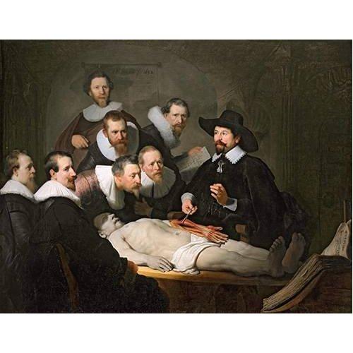 Tableau - La Leçon d'anatomie du docteur Tulp -
