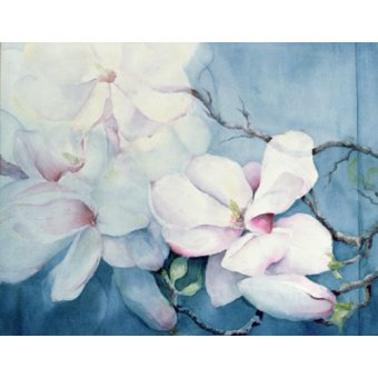 Tableaux de Fleurs - Tableau -Magnolia Soulangeana (horizl)- - Armitage, Karen