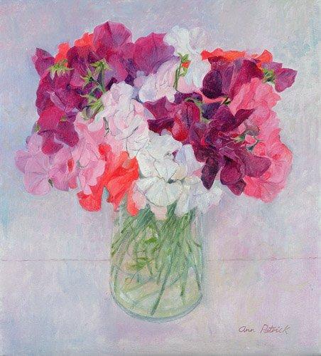 tableaux-de-fleurs - Tableau -Sweet Peas, 1999- - Patrick, Ann