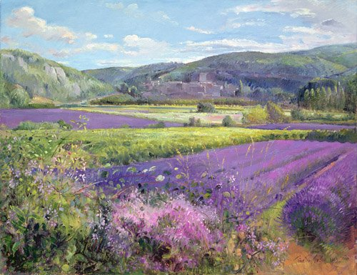 tableaux-pour-salon - Tableau - Lavender Fields in Old Provence - - Easton, Timothy