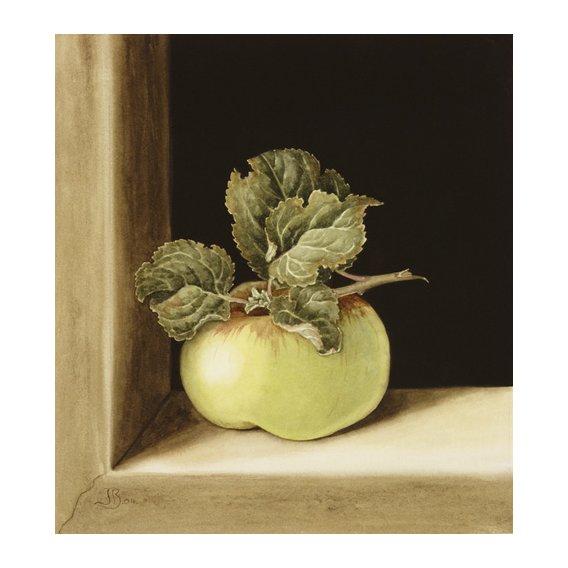 Tableau - Apple (w.c on paper) -