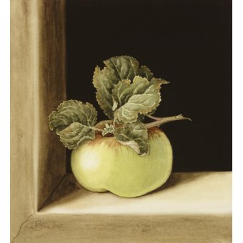 Tableaux nature morte - Tableau - Apple (w.c on paper) - - Barron, Jenny