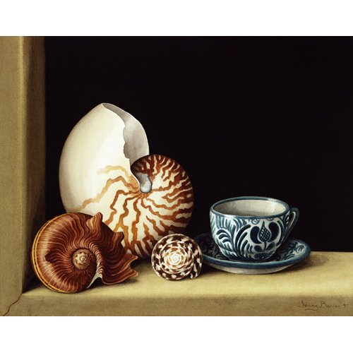 Tableau -Still life with Nautilus, 1998 (w.c on paper)-