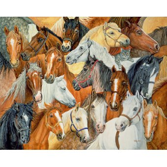 Tableaux de faune - Tableau -Dee's Horse-Blanket- - Ditz