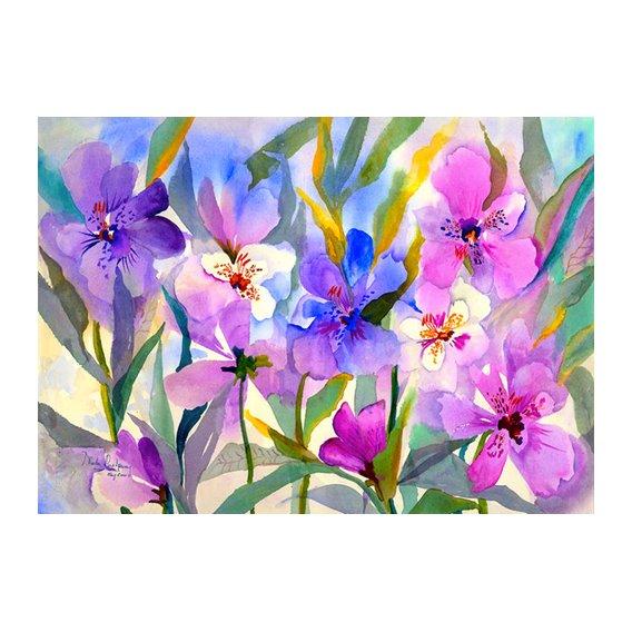 Tableau - Iris Fields-