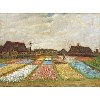 - Tableau -Parterres de fleurs en Hollande, 1883- - Van Gogh, Vincent